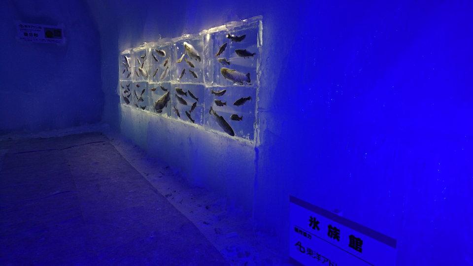 支笏湖氷濤まつり氷族館